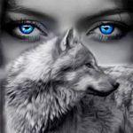 Аватар Волк и лицо голубоглазой девушки